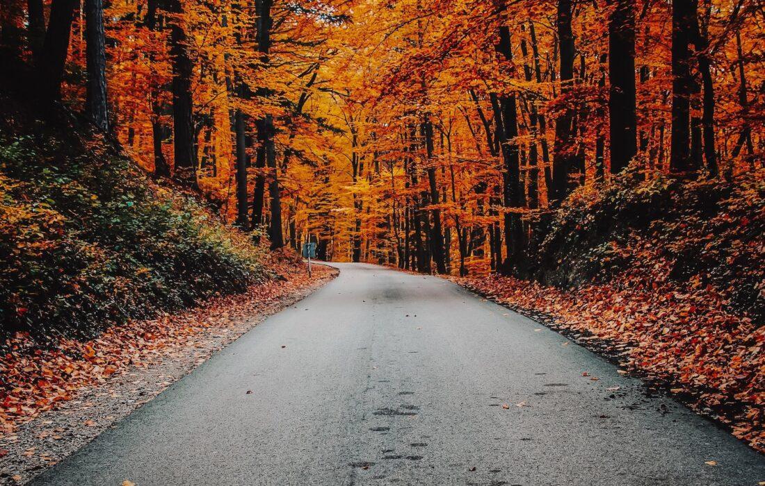 buitenactiviteiten herfst